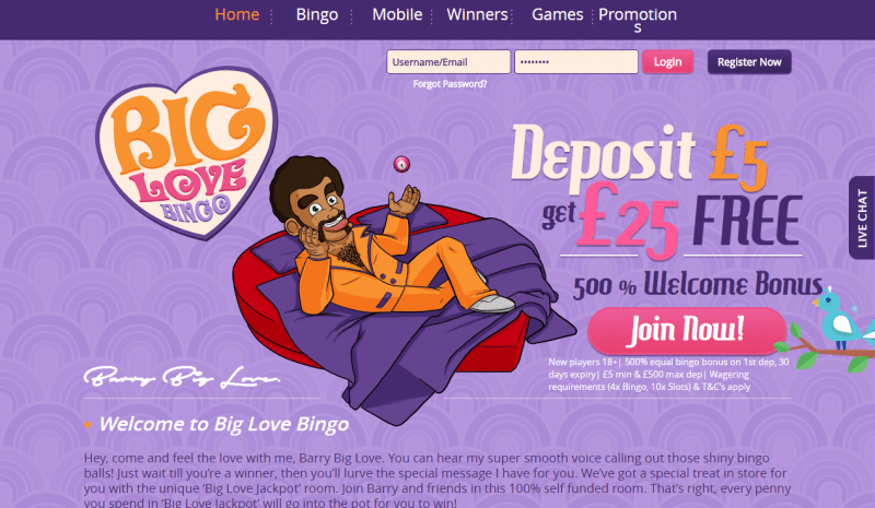 Big Love Bingo homepage