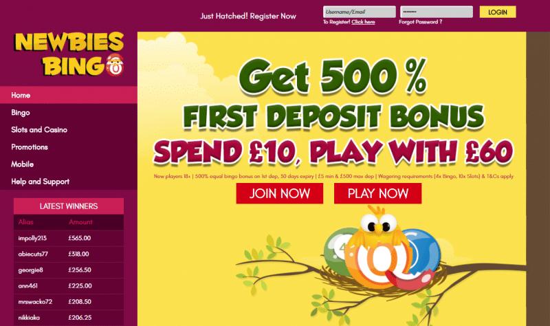 Newbies Bingo homepage