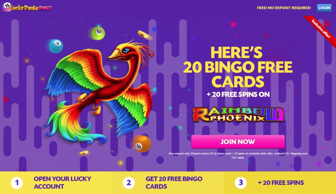 lucky pants bingo £30 free
